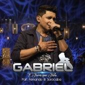 É Farra Que Fala (Ao Vivo) de Gabriel