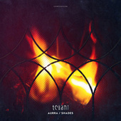Aurra / Shades by Tchami