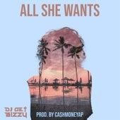 All She Wants de DJ Get Bizzy