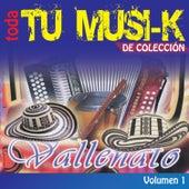 Tu Musi-K Vallenato, Vol. 1 von Various Artists