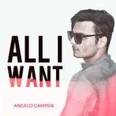 All I Want de Angelo Campos
