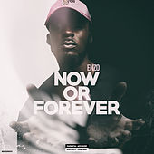 Now or Forever von Enzo