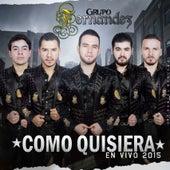 Como Quisiera (En Vivo) by Grupo Fernandez