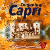 Amada Amante de Conjunto Capri