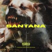 Santana by Shiva