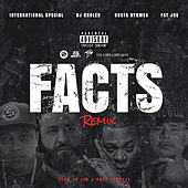 Facts Remix (feat. DJ Khaled, Busta Rhymes & Fat Joe) de International Special