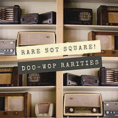 Rare Not Square! (Doo-wop Rarities) by Various Artists