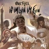 If I'm Lyin, I'm Flyin von Kodak Black