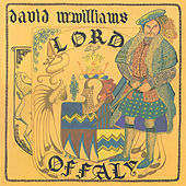 Lord Offaly de David McWilliams