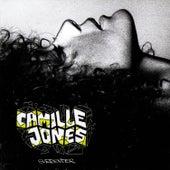 Welcome Stranger (International Version) by Camille Jones