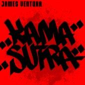 Kama Sutra de James Ventura