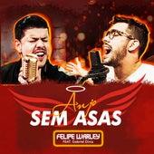 Anjo Sem Asas de Felipe Warley