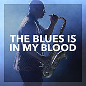The Blues is in my Blood by Various Artists