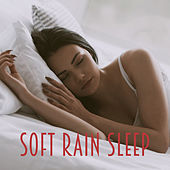 Soft Rain Sleep by Various Artists