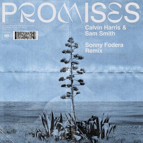 Promises (Sonny Fodera Remix) by Calvin Harris