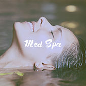 Med Spa by Various Artists