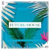 Future/House #9 von Various Artists