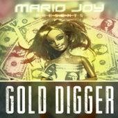 Gold Digger (Balkan Remix) de Mario Joy