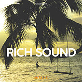 Rich Sound de Various