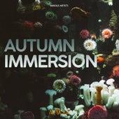 Autumn Immersion van Various