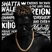 Reign by Shatta Wale