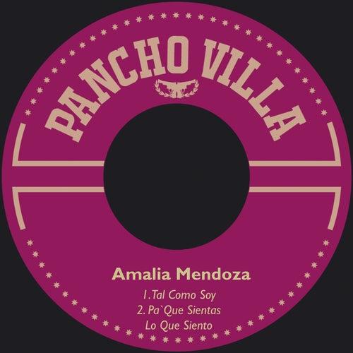 Tal Como Soy by Amalia Mendoza
