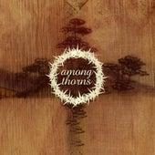 Among Thorns by Among Thorns