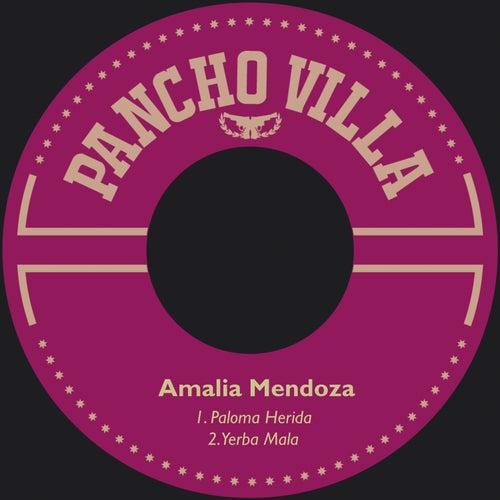 Paloma Herida by Amalia Mendoza