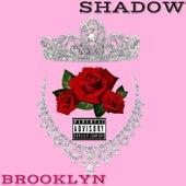 Brooklyn by Shadow