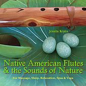 NATIVE AMERICAN FLUTES & SOUNDS OF NATURE (Relaxing Native American Flute & Nature Sounds for Massage, Sleep, Spas & Yoga) by Various Artists