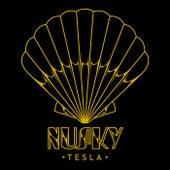 Tesla de Nusky