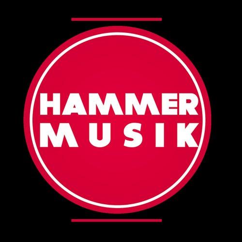 Hammer Musik Present Sizzla Classic Mixtape von Sizzla