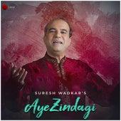 Aye Zindagi - Single by Suresh Wadkar
