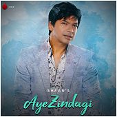 Aye Zindagi - Single by Shaan