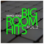 Big Room Hits Vol.2 by Various Artists