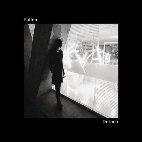 Detach by Fallen