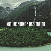 Nature Sounds Meditation by Various Artists