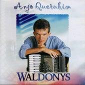 Anjo Querubim de Waldonys