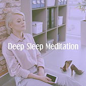 Deep Sleep Meditation von Various Artists