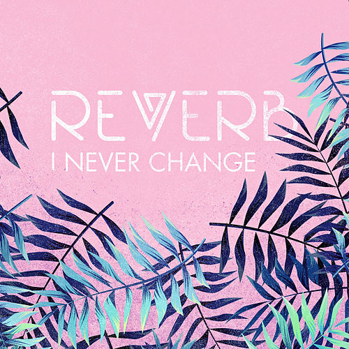I Never Change by Reverb