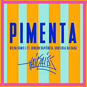 Pimenta (Selva Remix) by Haikaiss