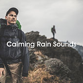 Calming Rain Sounds de Various Artists