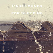 Rain Sounds for Sleeping by Various Artists