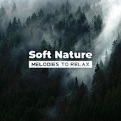 Soft Nature Melodies to Relax de Nature Sound Collection