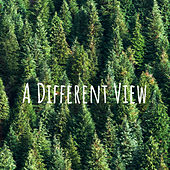 A Different View by Nature Sounds (1)