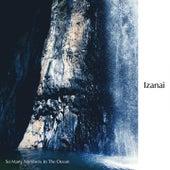 Izanai van So Many Numbers In The Ocean