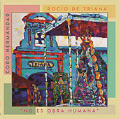 No Es Obra Humana by Coro de la Hermandad del Rocío de Triana
