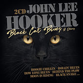 Black Cat Blues and others von John Lee Hooker