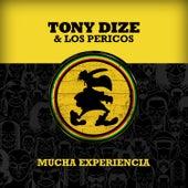 Mucha Experiencia by Tony Dize