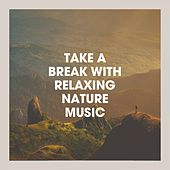 Take a Break With Relaxing Nature Music de Various Artists